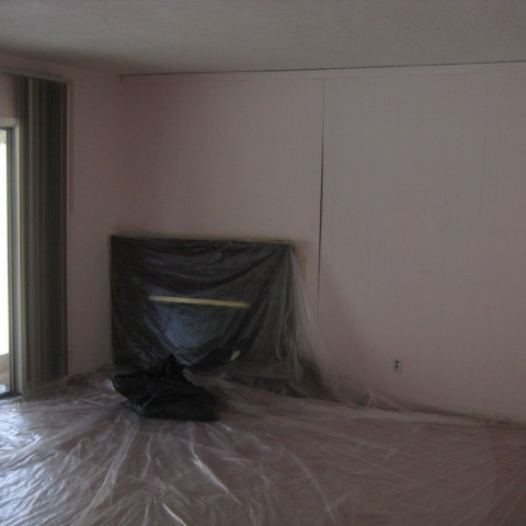 Total remodel painting
